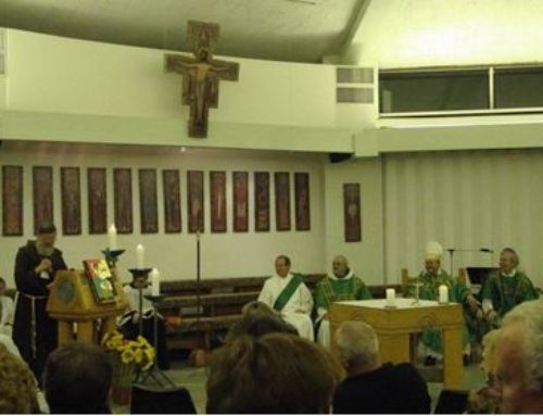 The Primary and the Four Marks of a Vibrant Secular Franciscan Fraternity