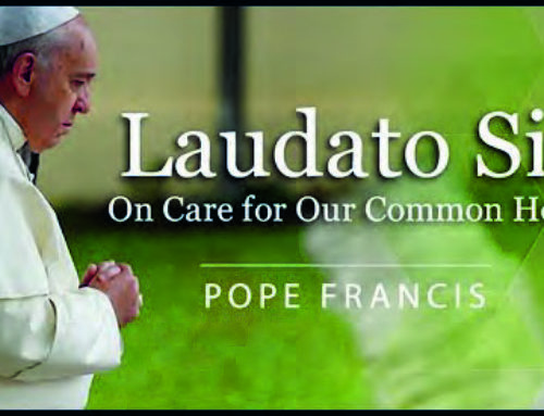 Conversion and Action on the Anniversary of Laudato Si'